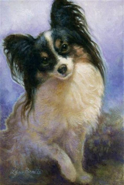 images  papillon dog art  pinterest