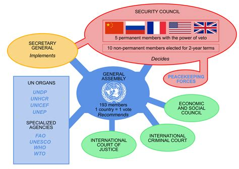 texto siege social united nations system