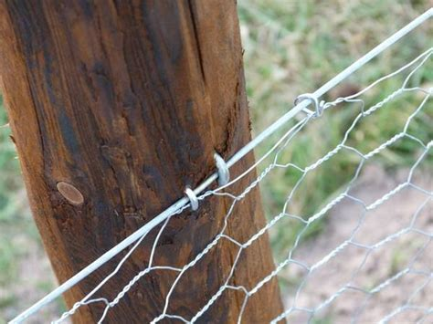 shaped nails secure mesh fencing  wooden post