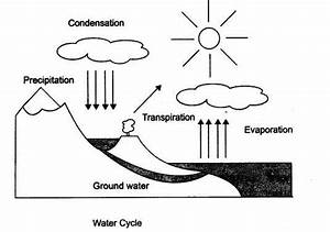 Explain Water Cycle With Diagram For Class 9