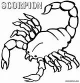 Scorpion Coloring Pages Printable Scorpions Animal Print Popular Minecraft sketch template