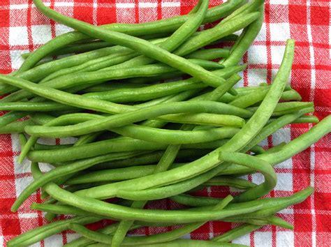 cuisiner haricots verts comment cuisiner les haricots verts 28 images comment