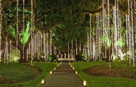 brookgreen gardens of a thousand candles top 8 places to see lights with global discovery Lovely