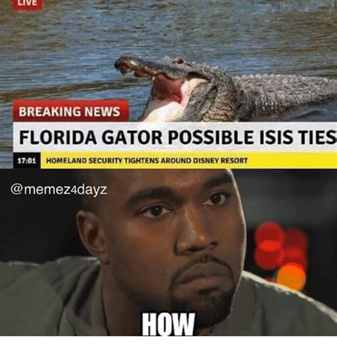 Florida Meme 25 Best Memes About Florida Gator Florida Gator Memes