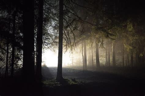 Jūlijā Latvijā noticis 51 meža ugunsgrēks - Latvijā - nra.lv