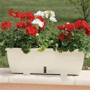 Grande Jardiniere Pas Cher : jardini re r serve d 39 eau riviera eva 57 cm achat vente ~ Premium-room.com Idées de Décoration