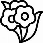 Icon Flowers Bunch Flower Cinema Icons Icons8