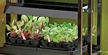 using fluorescent lights to grow vegetables gardening under grow lights gardener s supply