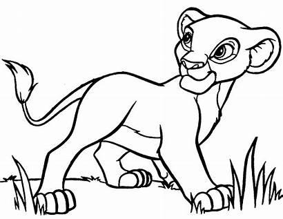 Lion Outline Cartoon King Characters Disney Famous