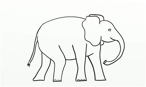 favorite icebreakers  groups elephant