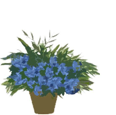Plants Nextcc
