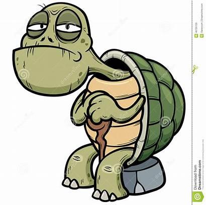 Turtle Tortue Clipart Vieille Cartoon Sick Student