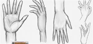 How to Draw a girl's hand « Drawing & Illustration ...