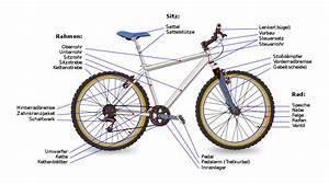 File Bicycle Diagram-de Svg