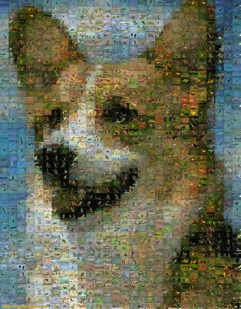 www photo picture mazaika the photo mosaic program make a photo mosaic