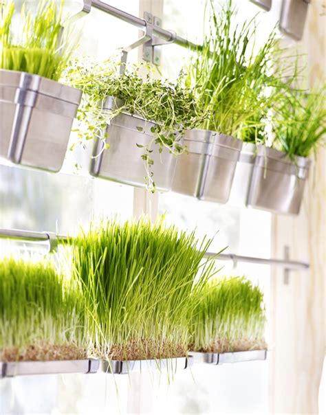 Vertical Herb Garden In Your Kitchen by How To Make The Most Of Limited Space In A Small Kitchen
