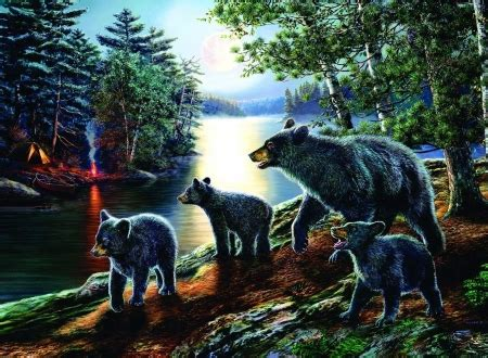 bear moon bears animals background wallpapers