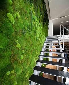 Pflanzen Im Treppenhaus : vorstellung unserer produkte pflanzen und moosbilder von stylegreen flur diele von ~ Orissabook.com Haus und Dekorationen