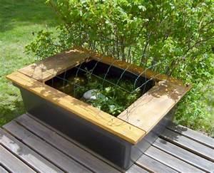 Bac à Poisson Extérieur : bac a poissons ~ Teatrodelosmanantiales.com Idées de Décoration
