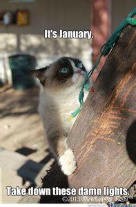 grumpy cats kerst humor  yeah baby