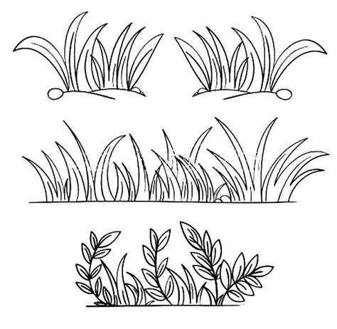 grass grass grow   coloring pages grass drawing