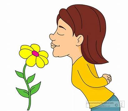Smell Smelling Clipart Flower Nose Clip Flowers
