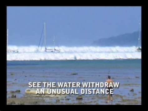natural warning signs   tsunami youtube