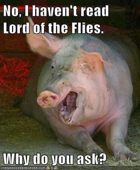 Lord Of The Flies Memes - lord of the flies pig funny animal pictures pinterest