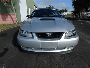 Used 2000 Ford Mustang GT For Sale ($9,900) | Rose Motorsports, Inc. Stock #2422