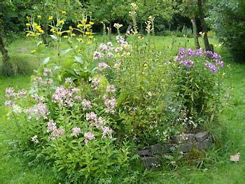 Kindgerechter Garten Wie Der Heimische Garten Fuer Kinder Zum Paradies Wird by Heimische Stauden Pflanzen F 252 R Nassen Boden