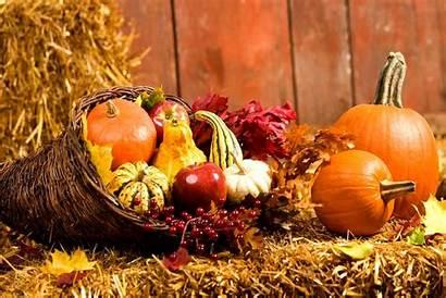 Thanksgiving Gfwc Thanks Harvest Autumn Acrostic Poem