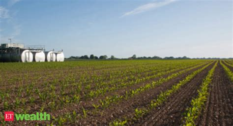 realty companies  foreign investment  buy farm land