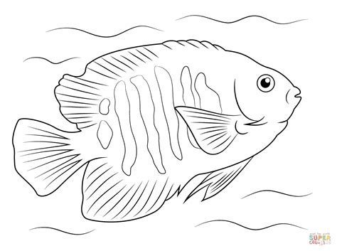 Tropical Fish Coloring Pages by Tropical Fish Coloring Pages Search Sea Things