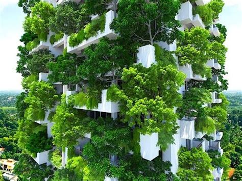 How To Start A Vertical Garden by 3 Easy Ways To Start A Vertical Garden