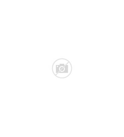 Chiller Industrial Oil Water Cooled Anges Air