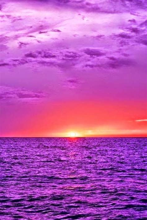 nature landscape  purple ocean beautiful