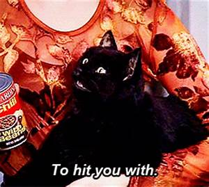 Sabrina The Teenage Witch Cat GIF - Find & Share on GIPHY