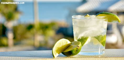 Vodka And Club Soda With Lime
