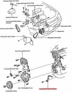 22r Engine Pulley Diagram Toyota Pickup Fuse Diagram Wiring Diagram