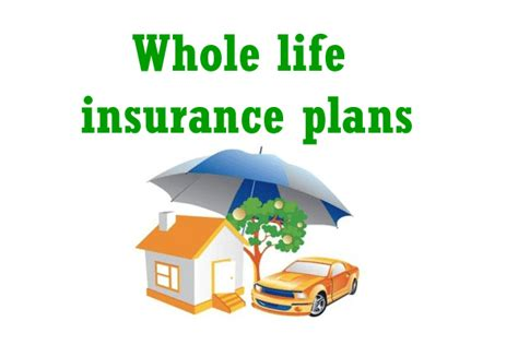 Whole life insurance plan provides to receive dividends that increases the value of the policy when the insured is living or provide an increased death benefit for your beneficiaries. Whole life insurance plans in India