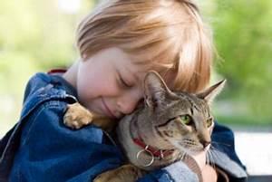 Baby Alter Berechnen : katzenjahre so berechnen sie das alter ihres haustieres ~ Themetempest.com Abrechnung