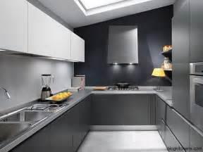 Modern Gray Kitchen Cabinets