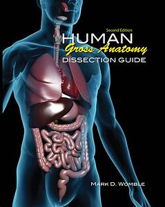 Human Gross Anatomy Dissection Guide For Physical Therapy