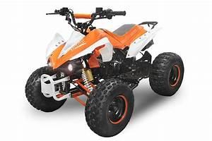 Quad 125cc Panthera : quad midi atv 125cc 4 takt motor 1122724 markusbikeshop ebay ~ Melissatoandfro.com Idées de Décoration