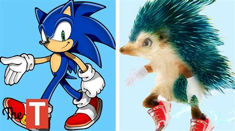 Movie Sonic Real Life Hedgehog