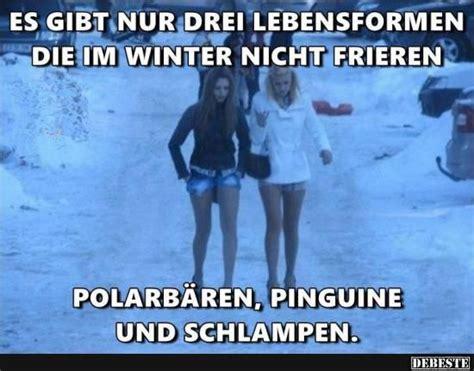lustige winter bilder es gibt nur drei lebensformen die im winter nicht frieren lustige bilder spr 252 che witze