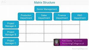Matrix Organisational Structure - A-z Of Business Terminology