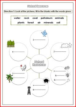 natural resources worksheet for g 3 4 by smiley tpt