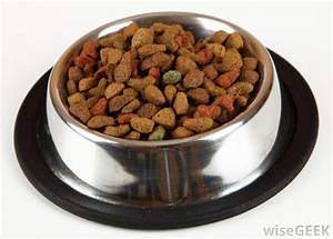 is it healthy to feed my dog ve arian dog food