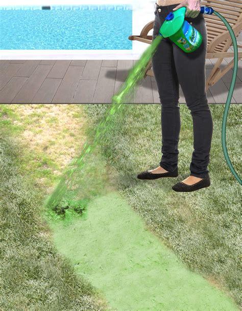 hydro lawn seed aquagrazz hydro grass seeding system ebay